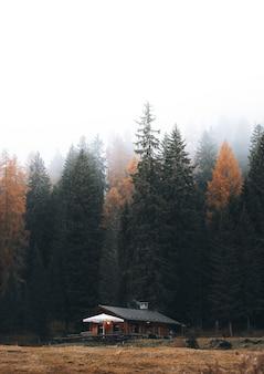 Уютный коттедж среди осенней природы