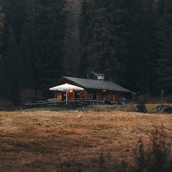 Cozy cottage among autumn nature