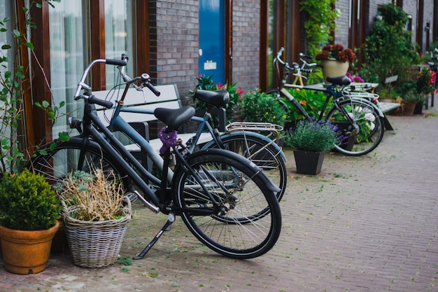 Cozy courtyards of amsterdam, benches, bicycles, flowers in tubs.