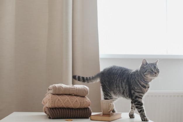 Уютная домашняя обстановка с кошачьей свечой и свитерами