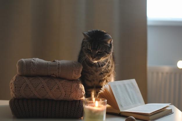 Уютная домашняя атмосфера с забавным кошачьим свечником и свитерами