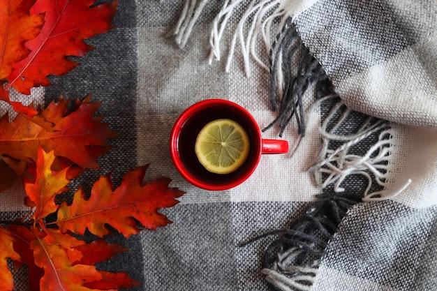 居心地の良い家の秋の構成。