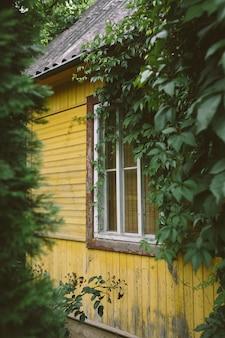 무성한 푸른 나무와 관목 사이에서 노란색으로 칠해진 아늑한 작은 별장 프리미엄 사진