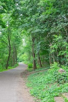 公園内の居心地の良い小道フォルクスパークプレンツラウアーベルク