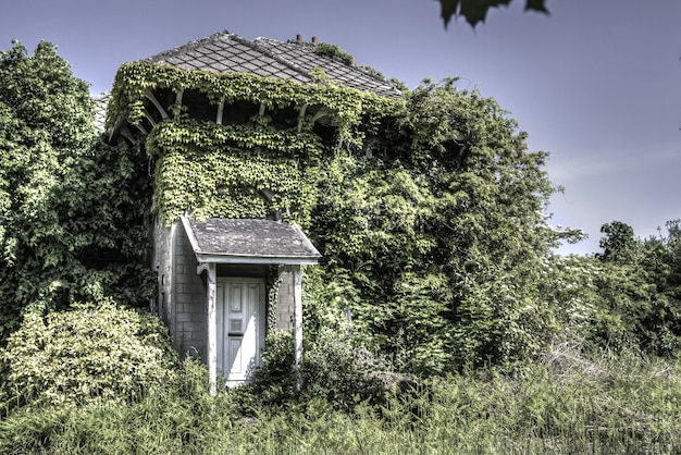 Accogliente casa residenziale immersa nel verde