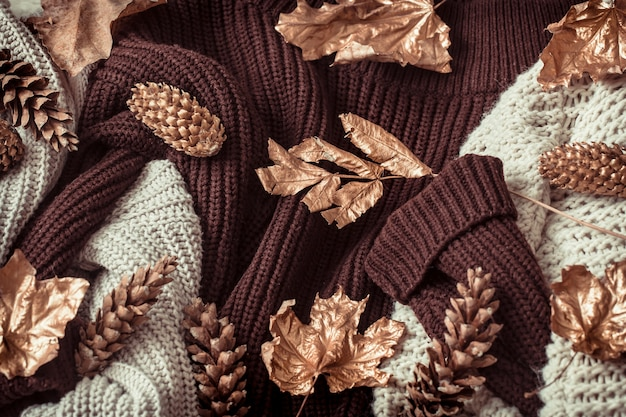 Cozy sweaters and gold leaves .