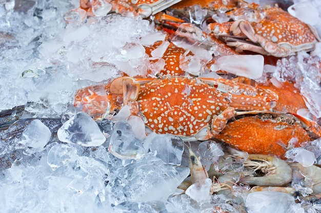 Crabs in an ice tray in fish matket