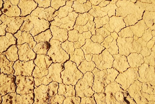 갈라진 찰흙 땅