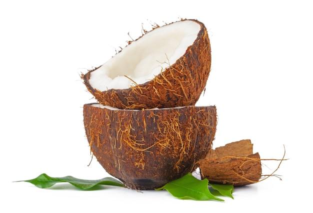 금이 코코넛 잎이 흰색 배경에 고립 된
