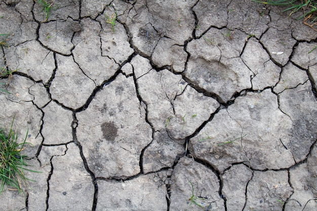 Cracked dried earth texture background, close up. dry, erosion, ecology problem concept.