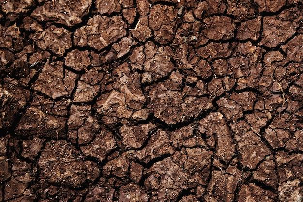 ひびの入った乾燥褐色土壌表面写真