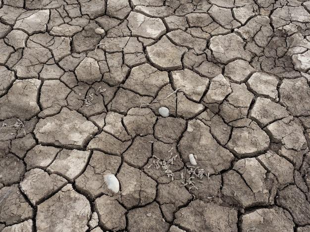 Треснувшая сухая земля. изменение климата, глобальное потепление, засуха.