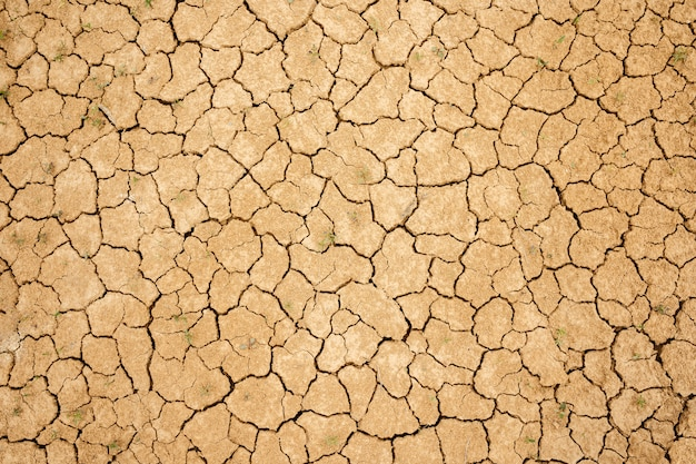 Cracked dry soil. dry yellow clay soil. fine texture.