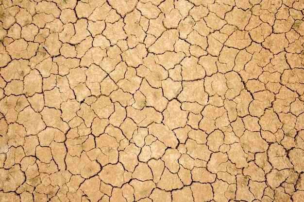 ひび割れた乾燥土壌。乾燥した黄色の粘土質土壌。細かい質感。