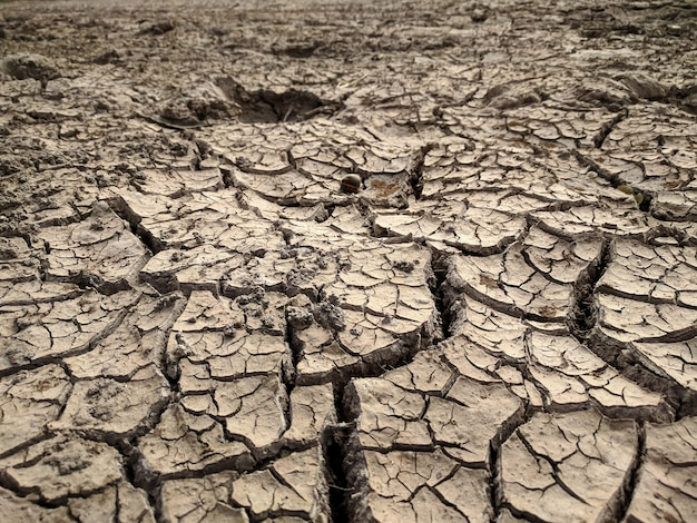 Cracked earth ,arid soil background