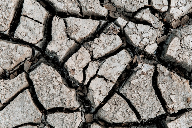 Cracked earth, cracked soil. texture of grungy dry cracking parched earth. global warming effect. close up