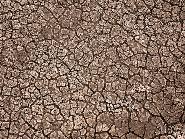 Cracked earth soil background
