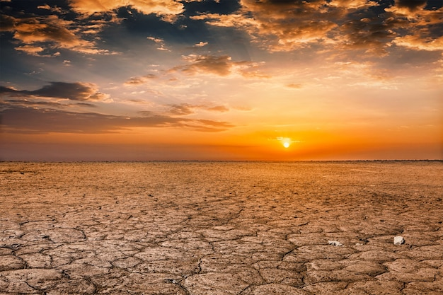 Cracked earth at sunset