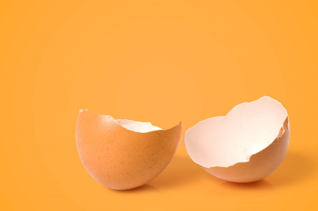 Cracked eggshell in vibrant color