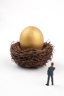Cracked golden egg and business man