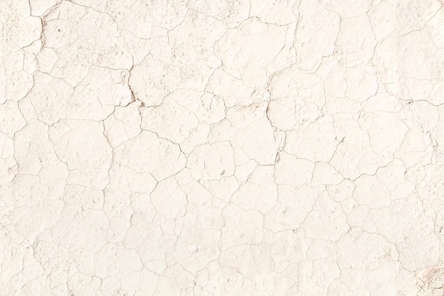 Cracked pale beige earth