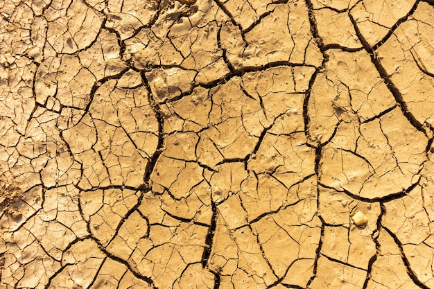 Cracked soil background close up
