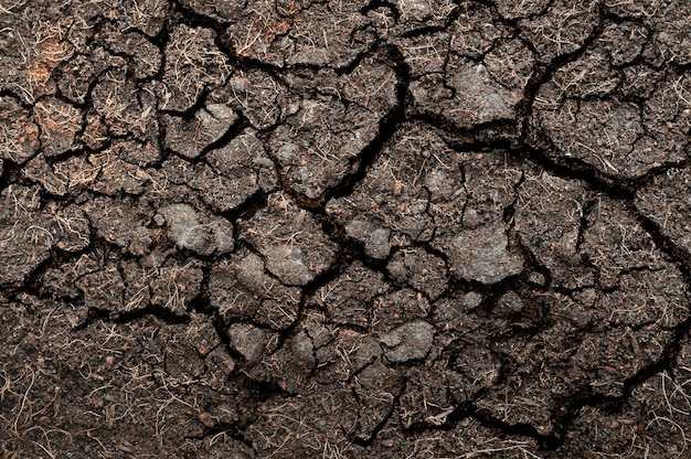 Cracked soil for background and texture material