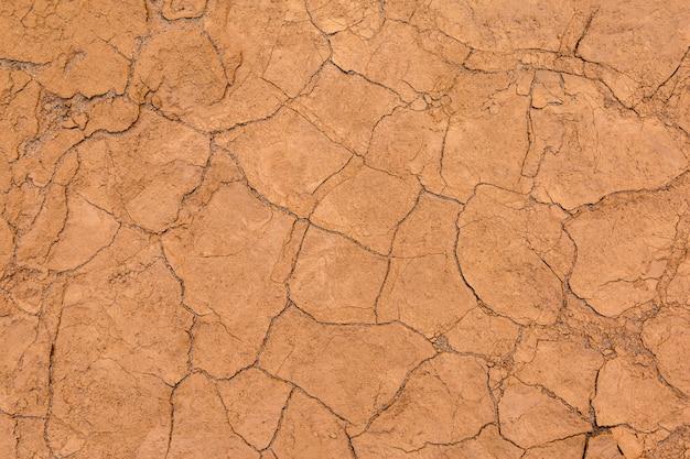 Cracked soil for background