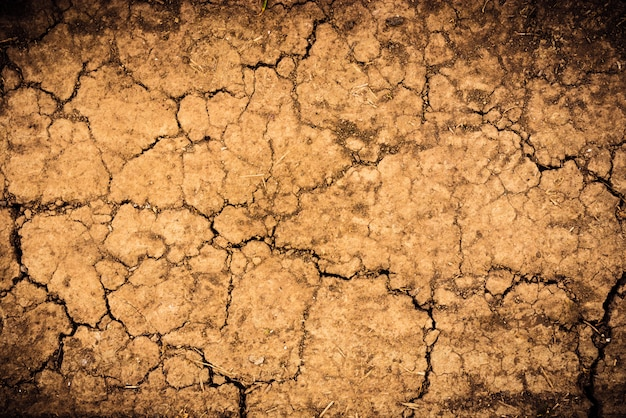 Cracked soil dry earth texture