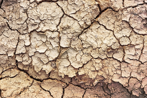 Растрескавшаяся почва для фонового и текстурного материала