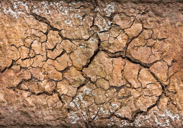 背景とテクスチャ素材のひびの入った土
