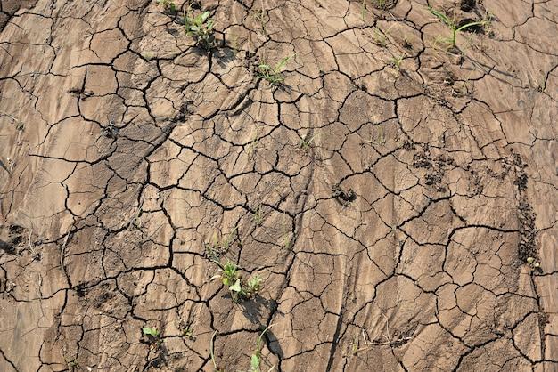 Земля с трещинами крупный план трещин на земле из-за засухи
