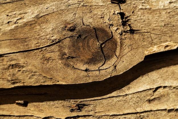 Cracked wooden brick