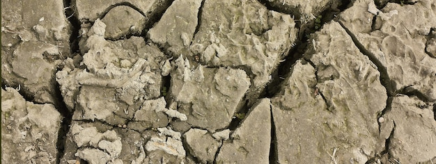 지구의 균열, 복사 공간이 있는 배너 이미지
