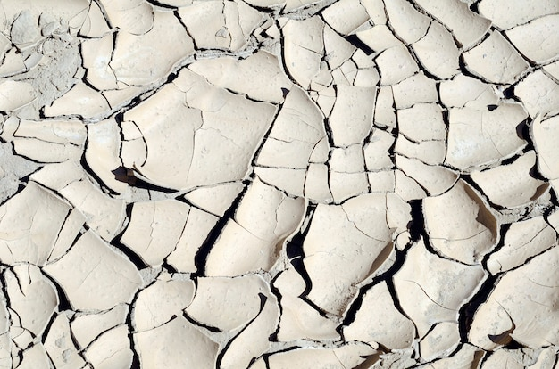 Cracks in the mud of a reservoir due to drought