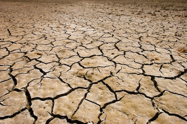Трещины на почве во время засухи