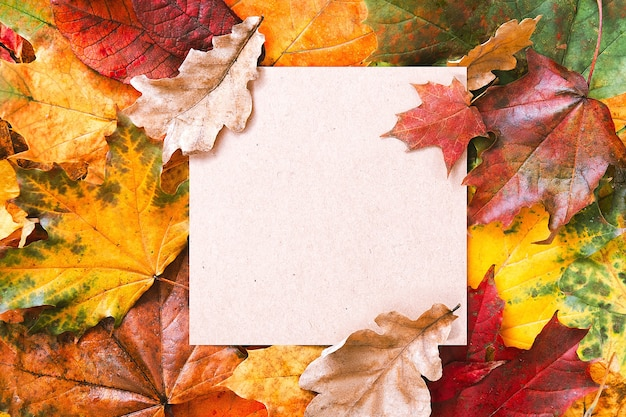 Craft aaper blank frame and autumn leaves background. autumn mockup. autumn composition, fall concept. flat lay, top view and copy space