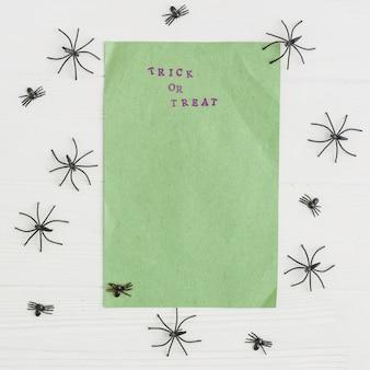 Craft green paper near decorating tarantulas