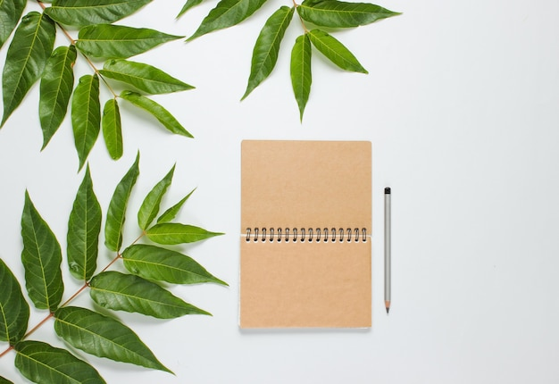 Craft notebook with pencil on a white background with green leaves. minimalistic natural eco concept.