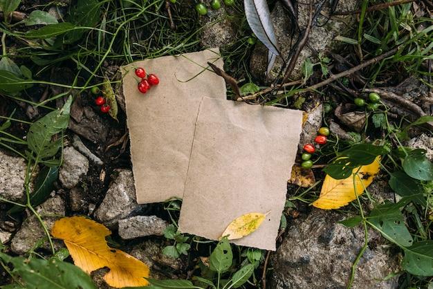 Шаблон макета из крафт-бумаги на фоне волшебной осенней природы леса