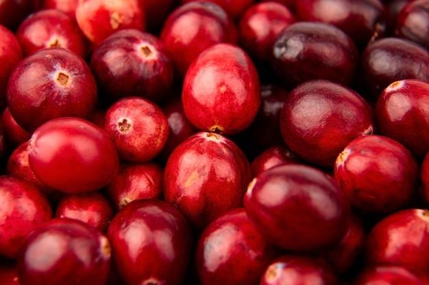 Клюква еда фон красные свежие осенние ягоды