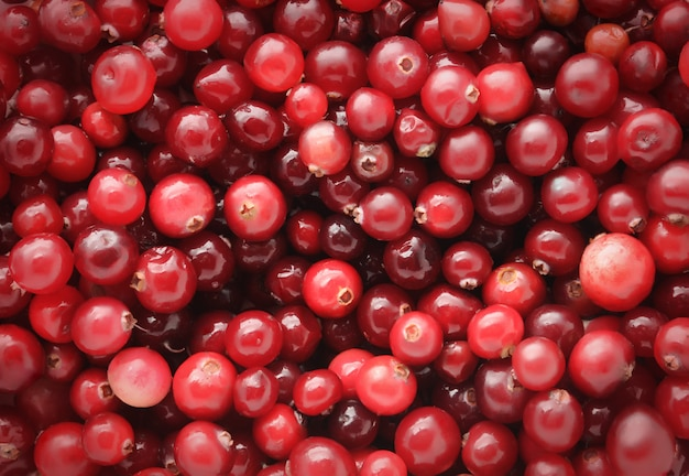Cranberries horizontal background