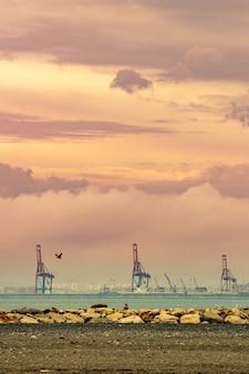 Cranes in a seaport