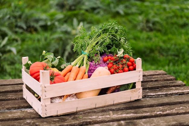 필드에 야채와 채소로 가득한 상자