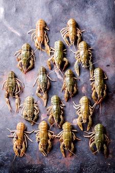 Crayfish raw,baby lobster.summer food. seafood.