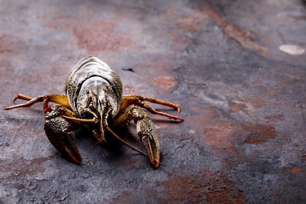 Crayfish raw,baby lobster