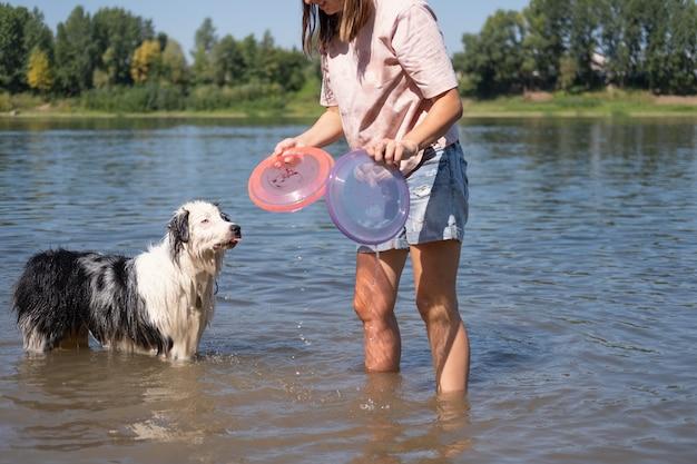 Сумасшедшая мокрая австралийская овчарка блю-мерль играет с двумя летающими тарелками с женщиной возле реки, на песке, летом. ждите игры. развлекайтесь с домашними животными на пляже. путешествуйте с домашними животными.