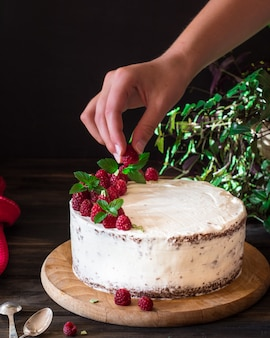 Creamy fruit cake. raspberry cake with chocolate. chocolate cake. mint.cheesecake. black f