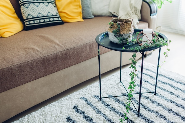 Creating modern interior using home plants. string of hearts put in basket on coffee table for cozy atmosphere.