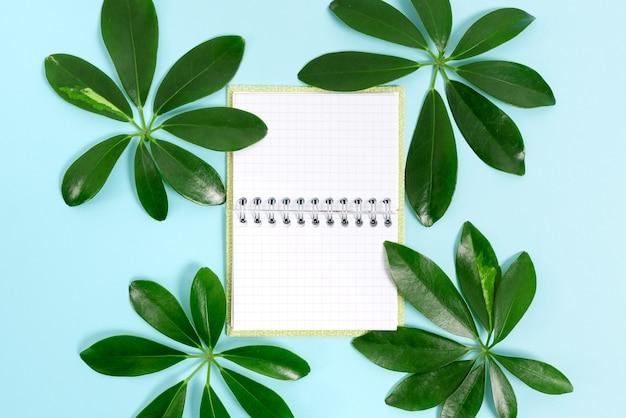 자연 테마 블로그 콘텐츠 만들기, 환경 손실 방지, 재생 가능 재료 전시, 재생 가능 제품 만들기, 유기농 재료, 정원 가꾸기 디자인 기획